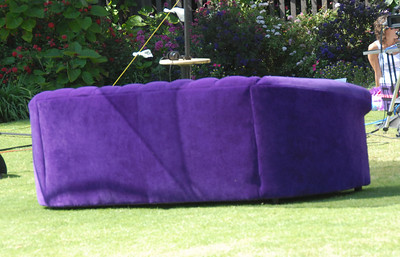 The purple couch, a tv show they were filming in Balboa Park