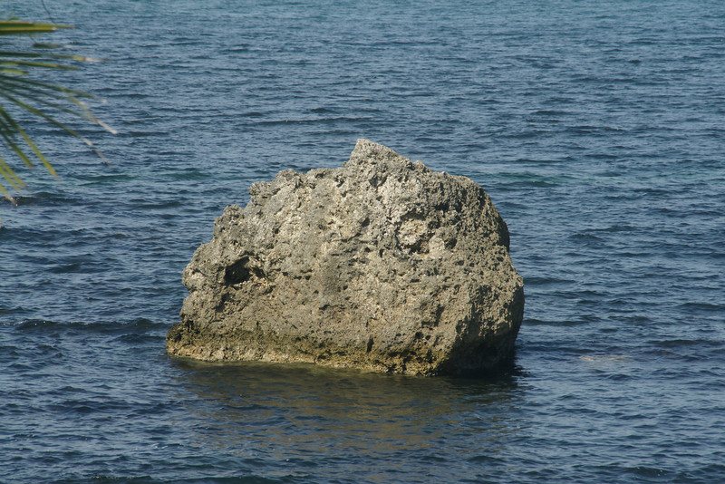 We call it lonley rock