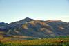 Catalina Mountains Sunset fron Bernie's