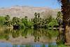 Agua Caliente Park 1