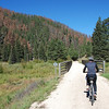Kim on the trail.  A good look also at the epidemic of tree death from the pine beetle.
