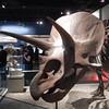 Triceratops skull from Dinosaur hall.