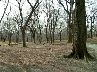 2004-03-14 at 16-13-55