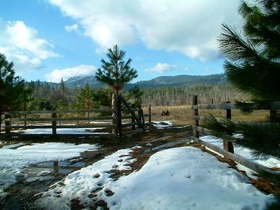 Yosemite - Vista panoramica 2004-03-05 at 00-49-18