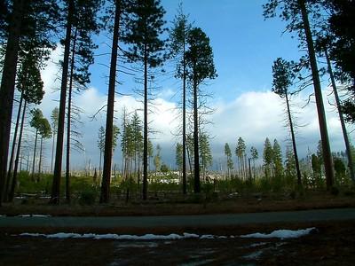 Yosemite - Vista panoramica 2004-03-05 at 00-45-35