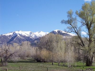 Near Mancos, CO.