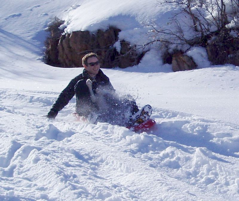 Cosmo loves sledding