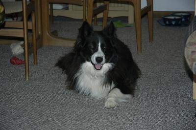 Utah April 2009