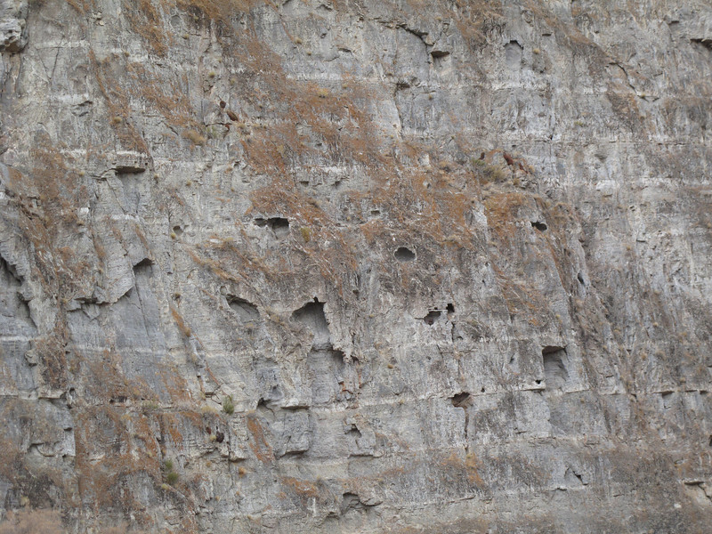 rock wall in Sawtooth canyon