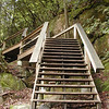 Nicely constructed wooden steps to Upper Falls