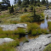 Pools of standing water on this rocky outcrop at Grandfather Mountain. <br /> Unusual plant species grow here.