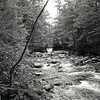 "Pemigewasset River, Franconia Notch State Park NH<br /> <a href=""http://www.nhstateparks.org/explore/state-parks/notchs-natural-wonders.aspx"">http://www.nhstateparks.org/explore/state-parks/notchs-natural-wonders.aspx</a><br /> Film: 35mm ORWO UN54 100 ASA<br /> Camera: Nikon N80<br /> Developed: Caffenol C-L<br /> Scanned Epson V600 Edited in Adobe Elements 10"