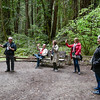 Armstrong Redwoods State Preserve