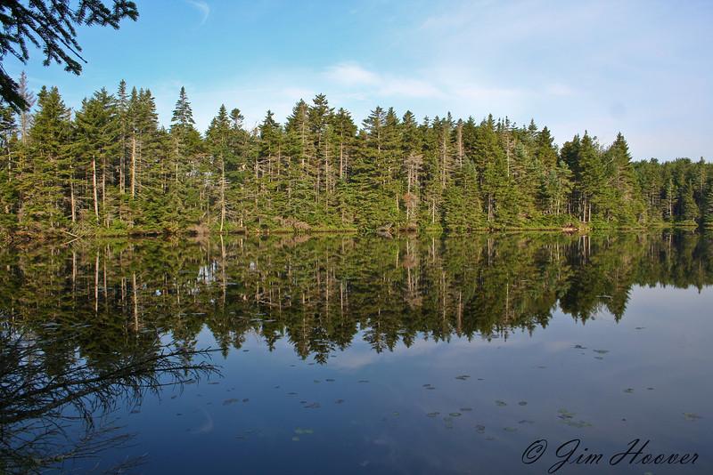 Summer reflection in Vermont