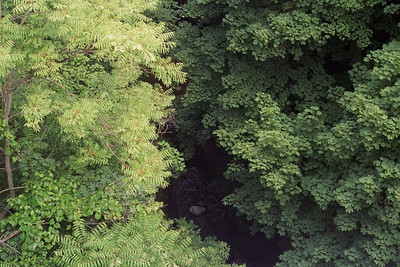 Looking down on the creek from the bridge
