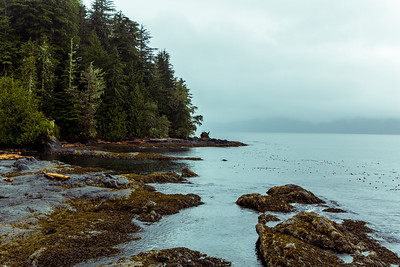 Port Renfrew bay.