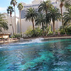 We stayed at the Mirage and they had the Siegfried & Roy's Secret Garden and Dolphin Habitat.