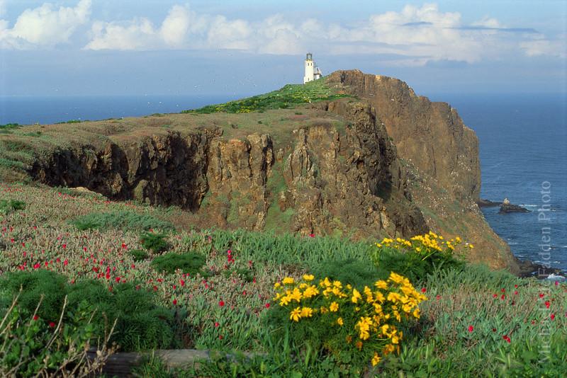 Lighthouse, Anacapa Island