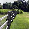 Marsh-Billings-Rockefeller National Historical Park