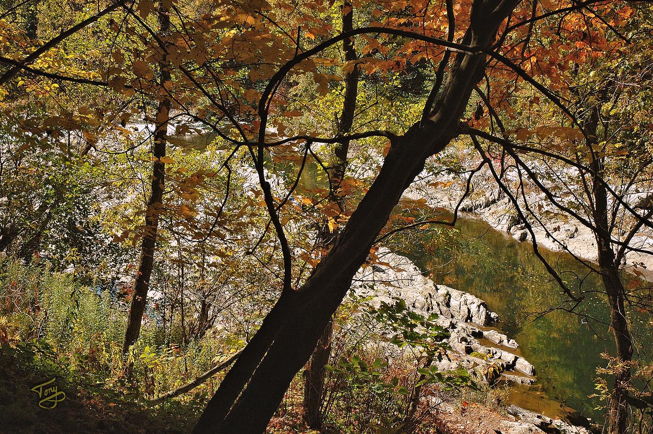 Quechee VT - Quechee Gorge Trail - Quiet Pool amid the Rapids
