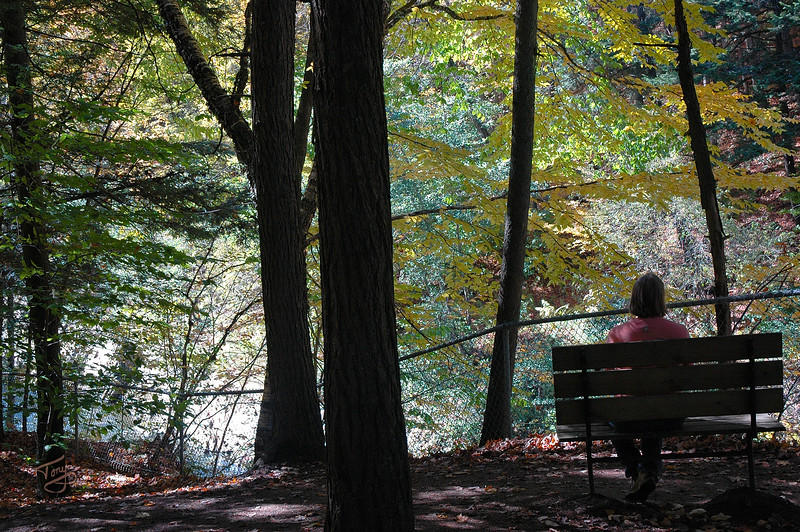 Quechee VT - Quechee Gorge Trail - Respite