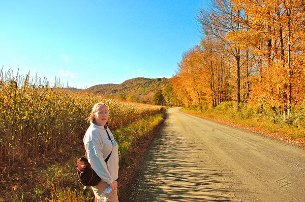 Woodstock VT - Bridges Road - Judy and Corn Field