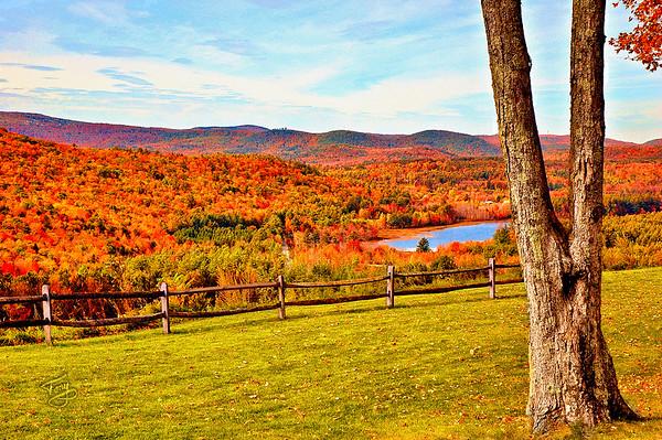 Vermont Leafpeeping 2008