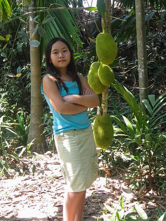 Viet Name 2007
