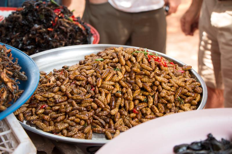 Larvae served roadside!