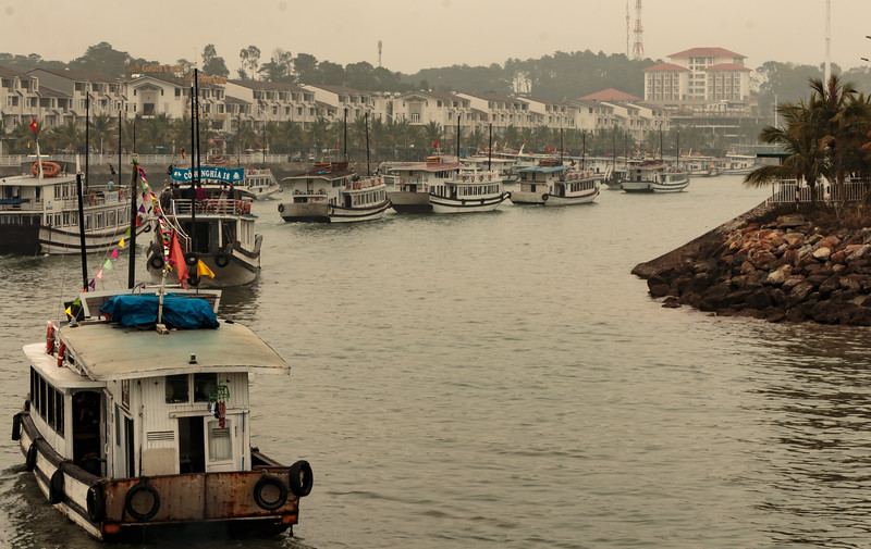 Parade of sightseeing boats returning to the dock after cruising Halong Bay