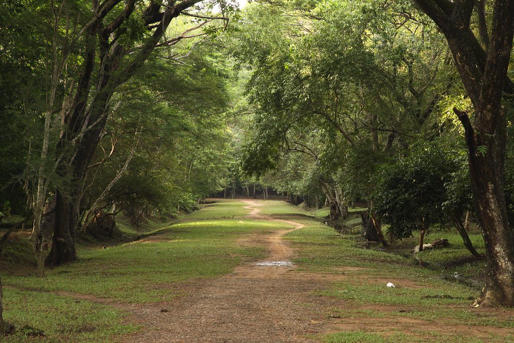 Angkor Pathway