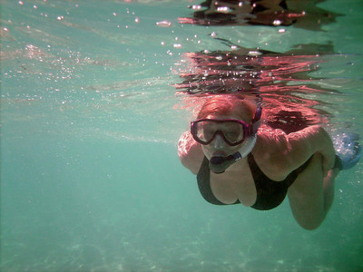 Anegada Loblolly Bay Snorkel with Dive BVI