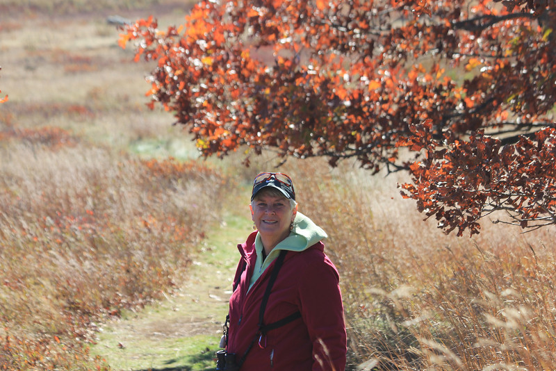 October 13, 2012 - (Shenandoah National Park [near Big Meadows visitor center] / Syria, Madison County, Virginia) -- Mary Anne