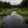 Jackman Pond, NH