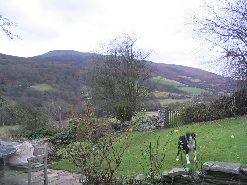 The view from the farm house in Abergavenny.  The dog is Sweep, who was very afraid of us the whole time we were there.