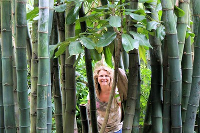 What is that I see? It is some more jungle wildlife?  Why it is Me peeking thru the bamboo.