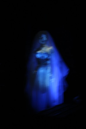 Why yes you are seeing one of the 999 ghosts from the Haunted Mansion.