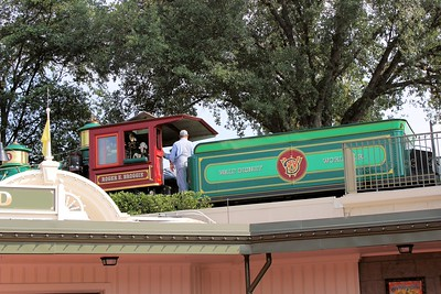 After breakfast we headed to Disney World.  Here is a shot of the train from outside the park.