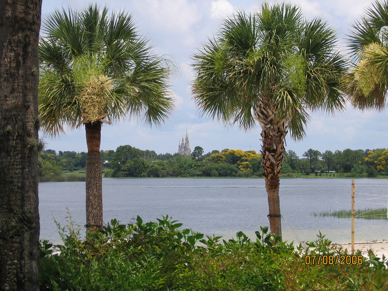 Cinderella castle from Polynesian