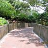 Polynesian walkway to tranportation center