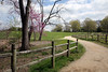 A path through the estate of Mount Vernon, Virginia