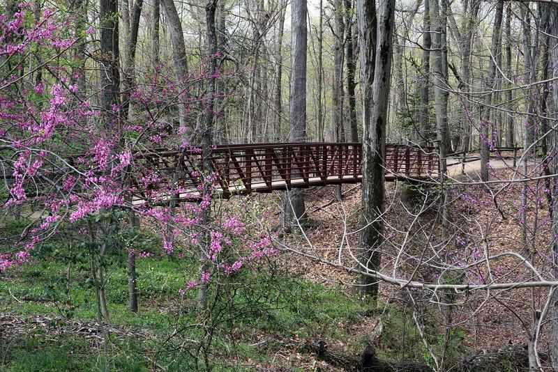 A foot bridge on the estate of Mount Vernon, Virginia