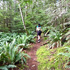 Hiking Mount Seymour on Quadra Island