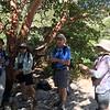 Stephanie, Bill, Jan @ Mckittrick Canyon Trail