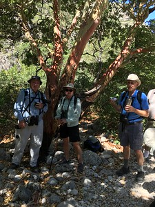 David, Stephanie, and Bill @ Mckittrick Canyon Trail
