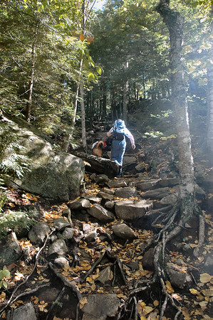 Albany NH - Boulder Loop Trail The hounds give Judy an assist up the steep climb to the top.