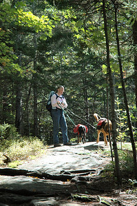 Albany NH - Boulder Loop Trail - Judy and her Hounds