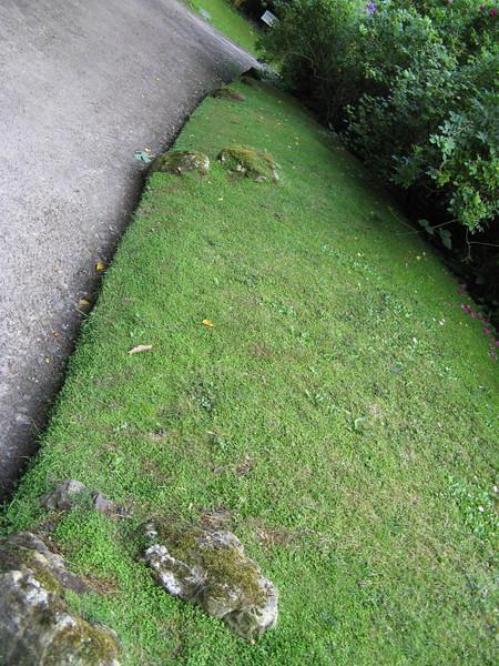 A Neat English Lawn.