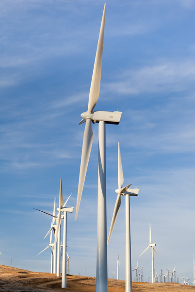 A group of windmills in California provides alternative energy to the state.