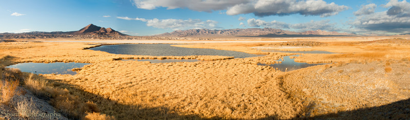 A panoramic view of the salt marshes near Tecopa.